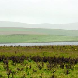 Orkney_2012_043