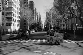 new_york_2015_allbest_015