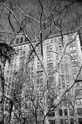 new_york_2015_allbest_018