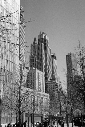 new_york_2015_allbest_041