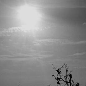 toscana_2015_bw_162