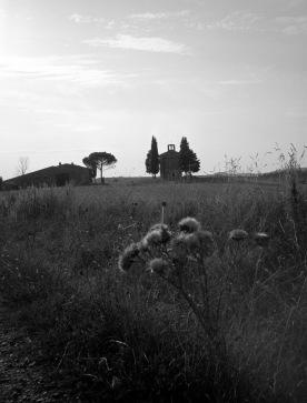 toscana_2015_bw_167