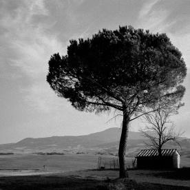 toscana_2015_bw_173
