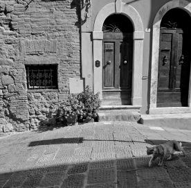 toscana_2015_bw_337