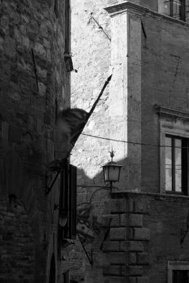 toscana_2015_bw_345