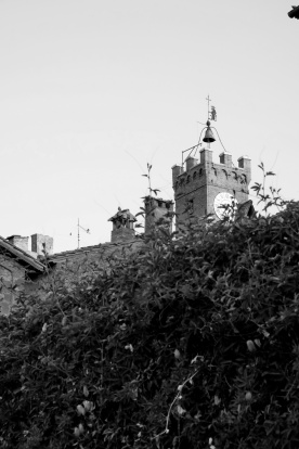 toscana_2015_bw_386
