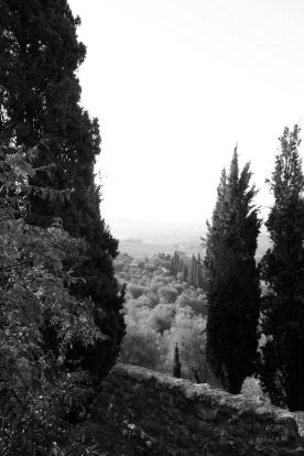 toscana_2015_bw_437