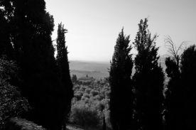 toscana_2015_bw_439