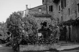 toscana_2015_bw_442