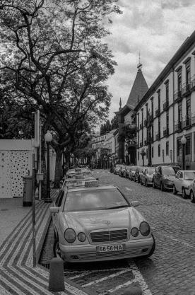 20180527-madeira_2018_ana_031