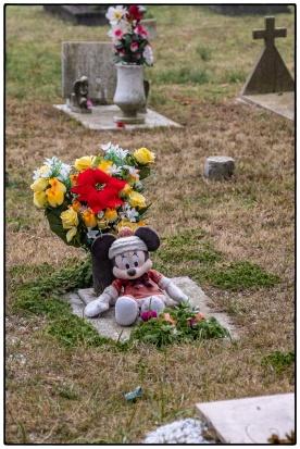 venedig_2019_0109_cimitero_006